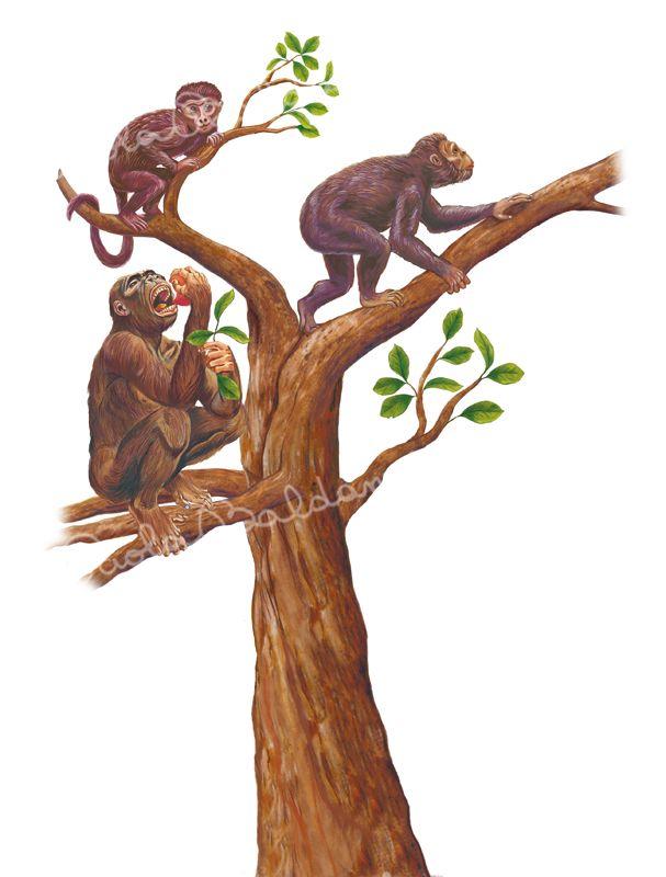 Preistoria-Primati